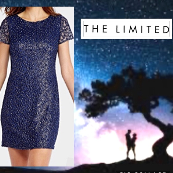 The Limited Dresses & Skirts - 🌟THE LIMITED Dress Blue Embroidered w Silver NWT